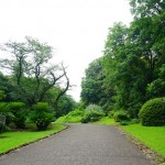 shokubutuen2-150x150 小石川植物園|散歩するつもりがあまりにも広くて途中で断念。