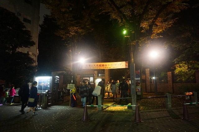 rikugien33 文京区観光名所1位|六義園「紅葉と大名庭園のライトアップ」