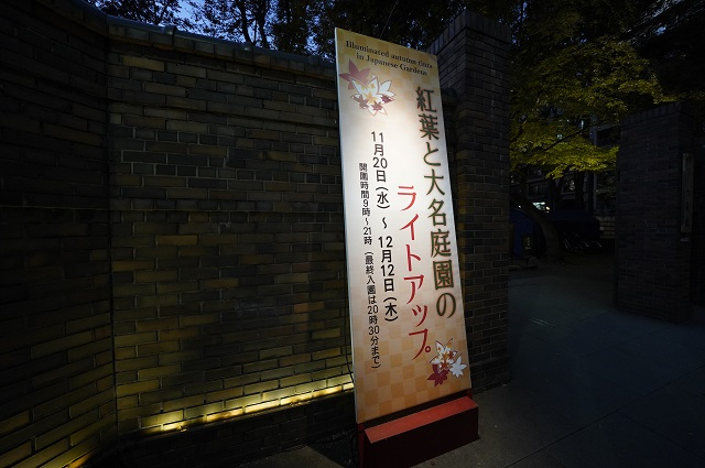 六義園「紅葉と大名庭園のライトアップ」2019年動画で紹介