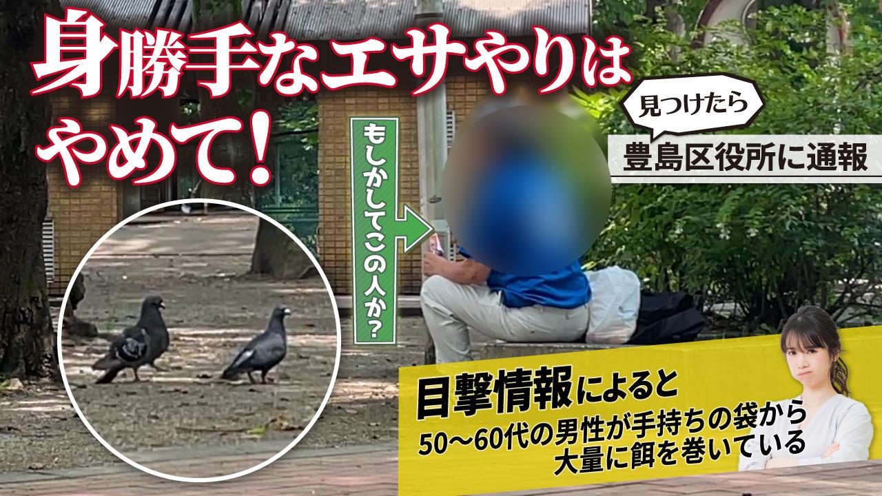 公園で鳩に餌を与えないで「隣接するマンションの資産価値にも影響!?」